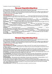 English Worksheet: Digestive System