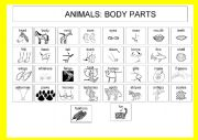 Animals: Body parts