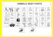 English Worksheet: Animals: Body parts