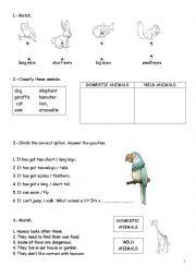 English Worksheet: Domestic and wild animals