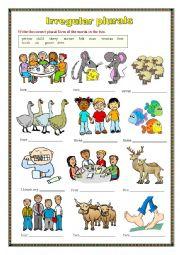 English Worksheet: Irregular Plurals (worksheet)