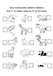 English Worksheet: wild and domestic animals