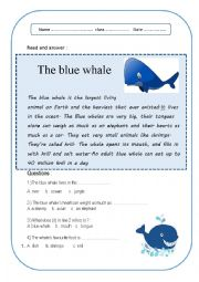 English Worksheet: blue whale