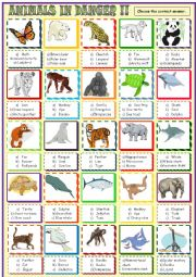 Endangered species  :Multiple choice activity