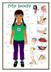 English worksheet: My body 2.