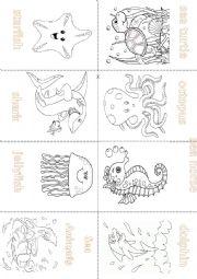 English Worksheet: Sea Animals - Mini Book