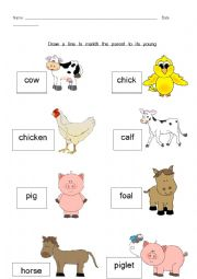 English Worksheet: Baby Animals Match