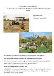 English Worksheet: Safaris or zoos - comparing pictures