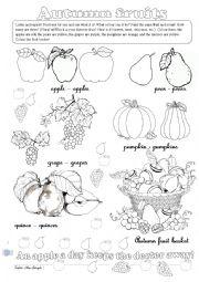 English Worksheet: Autumn fruits