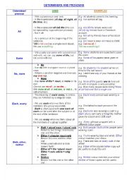 DETERMINERS AND PRONOUNS