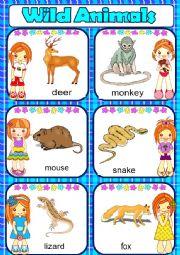 English Worksheet: Wild animals-part2