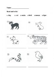 English Worksheet: Happy House 1-animals