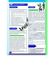 English Worksheet: Alternative Medicine-Reading/Speaking/Vocabulary/Grammar part