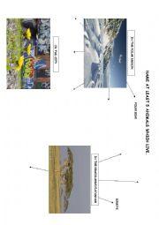 English Worksheet: Animal habitats - name 5 animals which live...