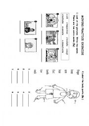English Worksheet: MOVERS PRACTICE EXERCISE