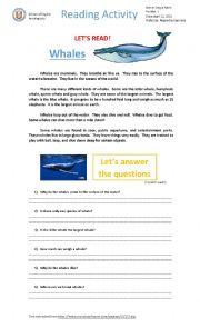 English Worksheet: Whales - reading activity