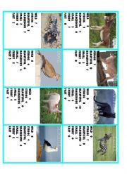 English Worksheet: comparision game with animals 3