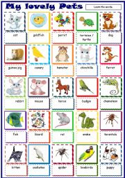 English Worksheet: My lovely Pets * Pictionary