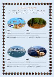 English Worksheet: Animal Habitats