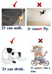 English Worksheet: Domestic animals 5