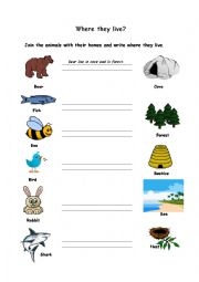 English Worksheet: Where they live?