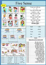 English Worksheet: Five Senses