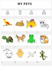 English Worksheet: My pets