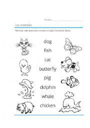 English Worksheet: The Animals