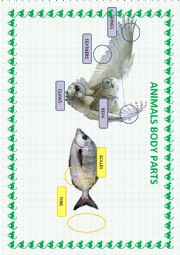 English worksheets: the animals worksheets, page 706