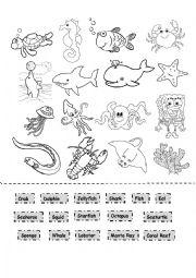 English Worksheet: Sea Animals Cut and Paste