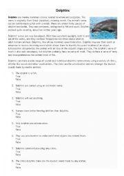 English Worksheet: Dolphins