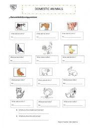 English Worksheet: domestic animals worksheet