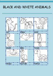English Worksheet: BLACK AND WHITE ANIMALS 1