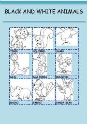 English Worksheet: BLACK AND WHITE ANIMALS 2