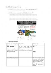English Worksheet: in safwe hands/ first aid