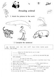 English Worksheet: Amazing animal facts