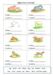 English Worksheet: Baby Farm Animals