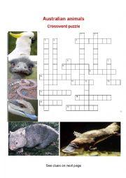 English Worksheet: Australian animals  (1)  Crosswords puzzle