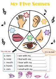 English Worksheet: My five senses