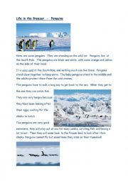English Worksheet: Reading/Comprehension task Penguins