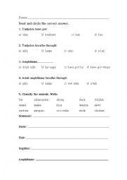 English Worksheet: Amphibians - vertebrates test