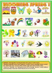 English Worksheet: Blooming spring: matching activity