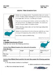 English Worksheet: SECOND TERM EXAMINATION