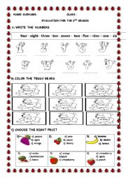 English Worksheet: evaluation for the 2nd grade students