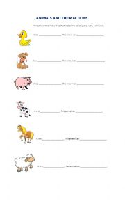 English Worksheet: animals and their actions