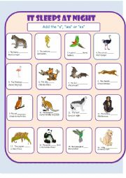 Third Person Singular with Animals