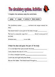English Worksheet: The circulatory system
