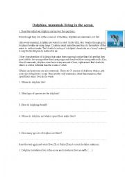 English Worksheet: Dolphins, mammals living in the ocean.