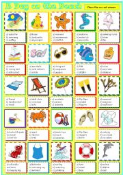 English Worksheet: A Day on the Beach