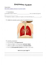 English Worksheet: The Respiratory System Video Activity